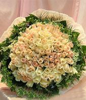 hongkong 99 Roses