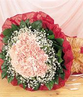hongkong Carnation