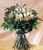 hongkong white roses